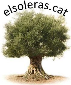 elsoleras.cat.jpg